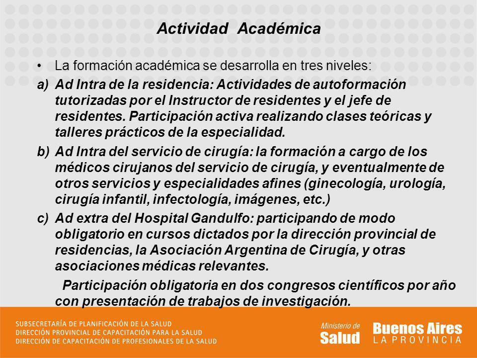 Actividad Académica La formación académica se desarrolla en tres niveles: