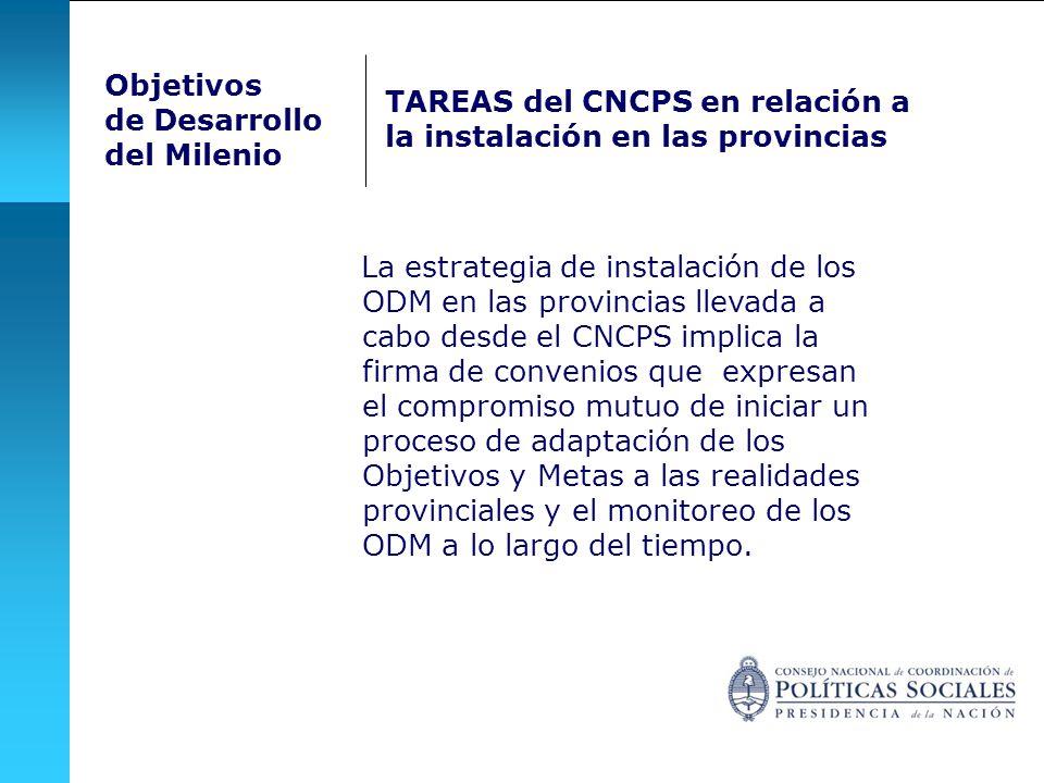 Objetivos de Desarrollo. del Milenio. TAREAS del CNCPS en relación a. la instalación en las provincias.