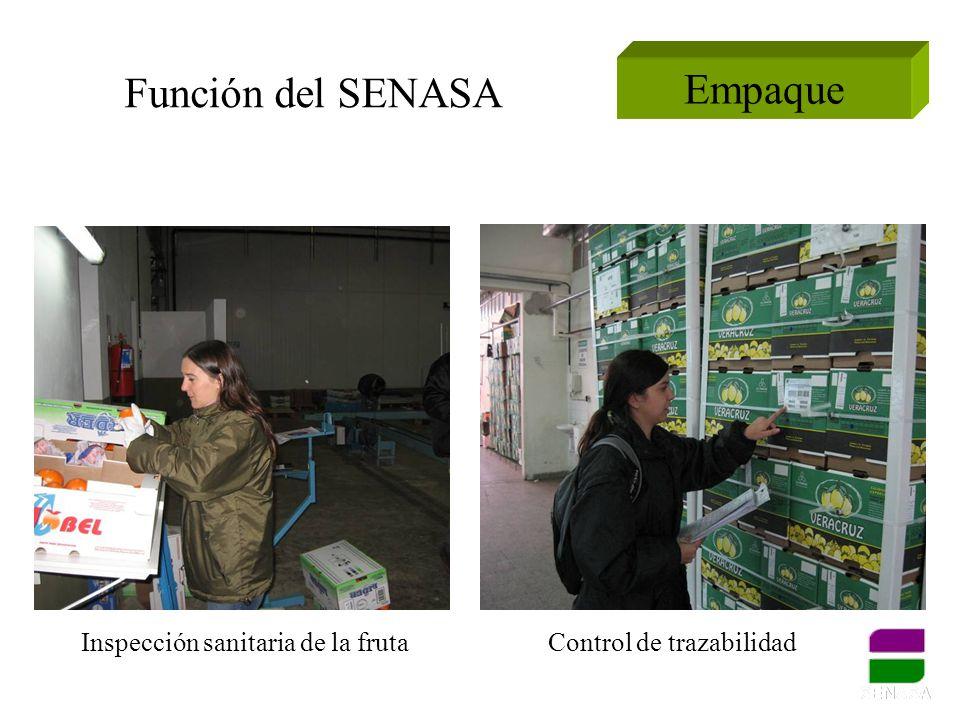 Función del SENASA Empaque Inspección sanitaria de la fruta