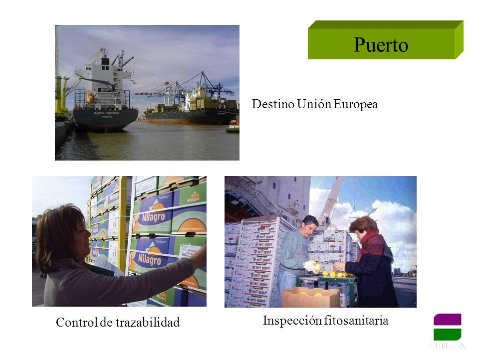 Puerto Destino Unión Europea Inspección fitosanitaria