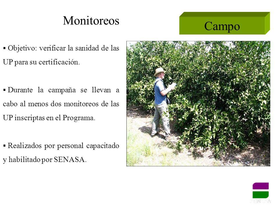 Monitoreos Campo. Objetivo: verificar la sanidad de las UP para su certificación.