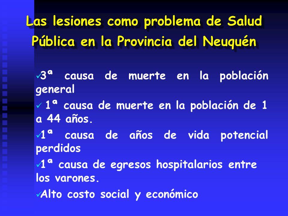 Las lesiones como problema de Salud Pública en la Provincia del Neuquén