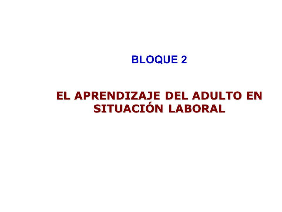 BLOQUE 2 EL APRENDIZAJE DEL ADULTO EN SITUACIÓN LABORAL