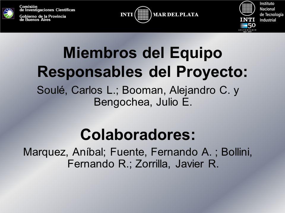 Miembros del Equipo Responsables del Proyecto: