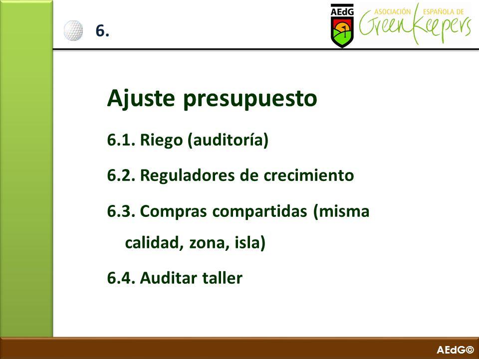 Ajuste presupuesto 6. 6.1. Riego (auditoría)