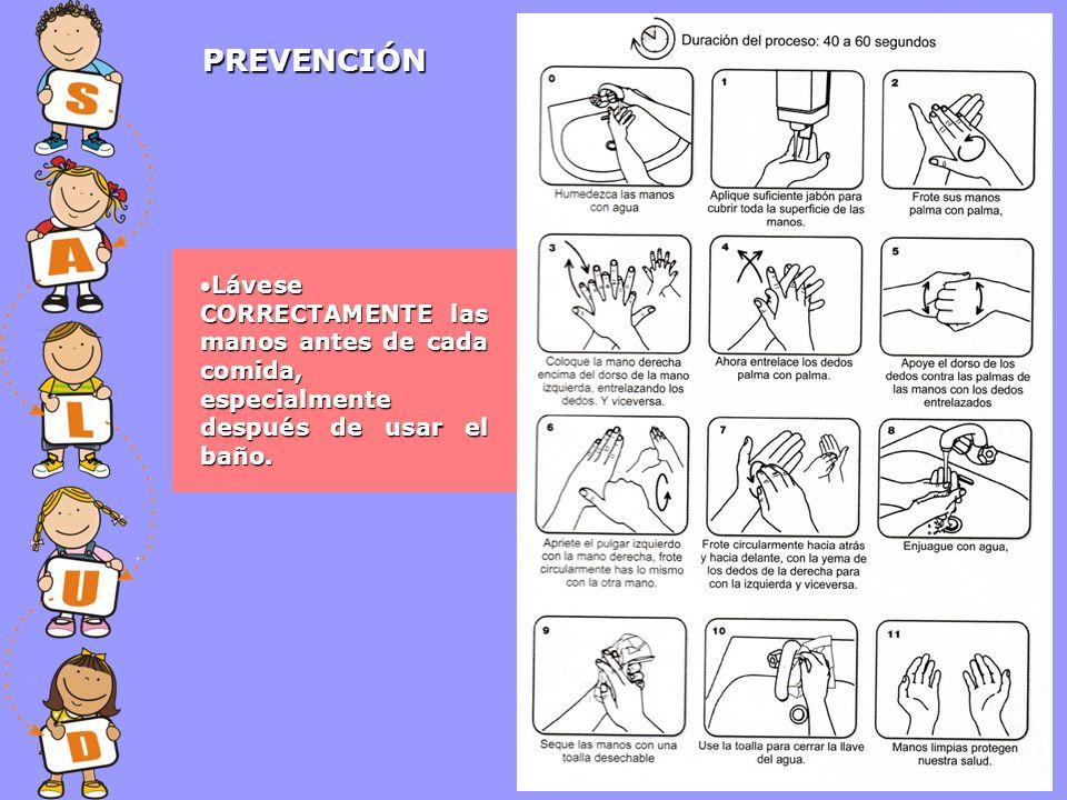 PREVENCIÓN Lávese CORRECTAMENTE las manos antes de cada comida, especialmente después de usar el baño.