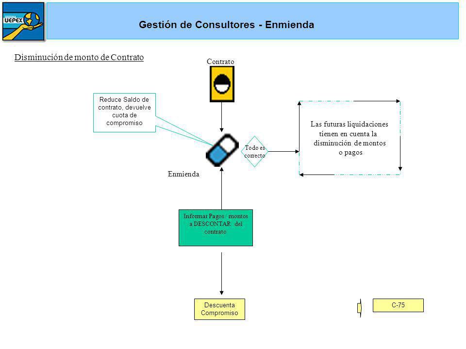 Gestión de Consultores - Enmienda