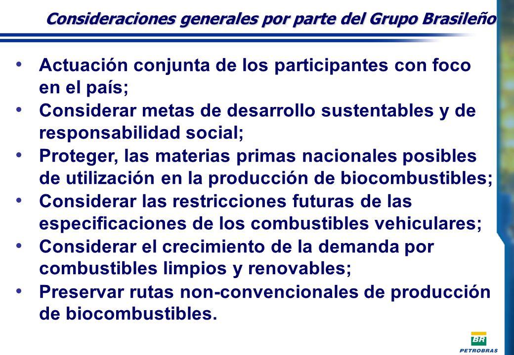 Consideraciones generales por parte del Grupo Brasileño