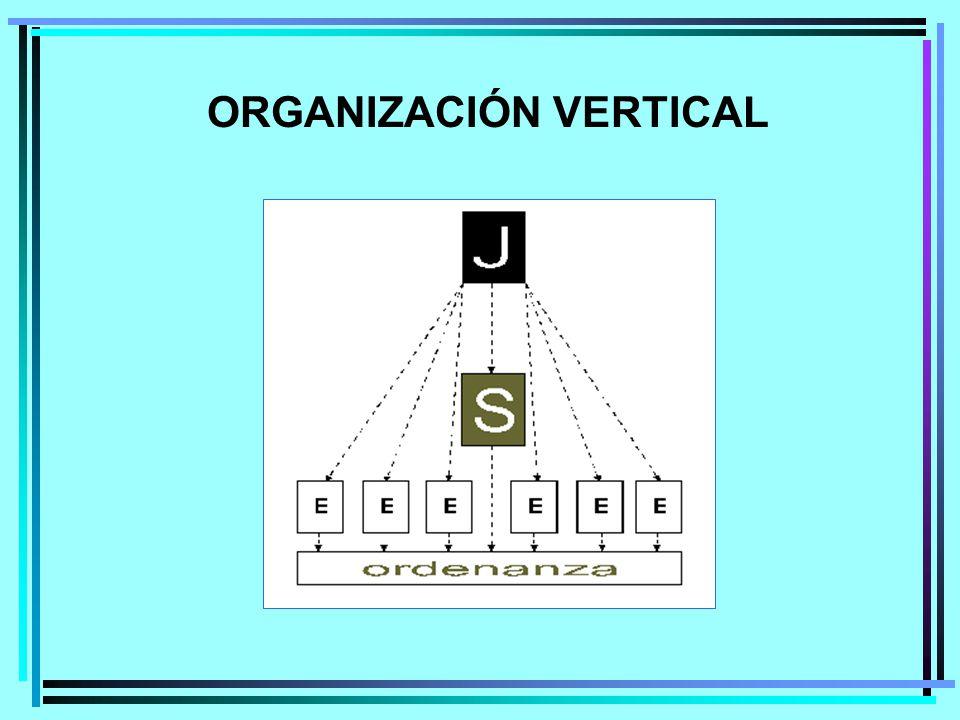 ORGANIZACIÓN VERTICAL