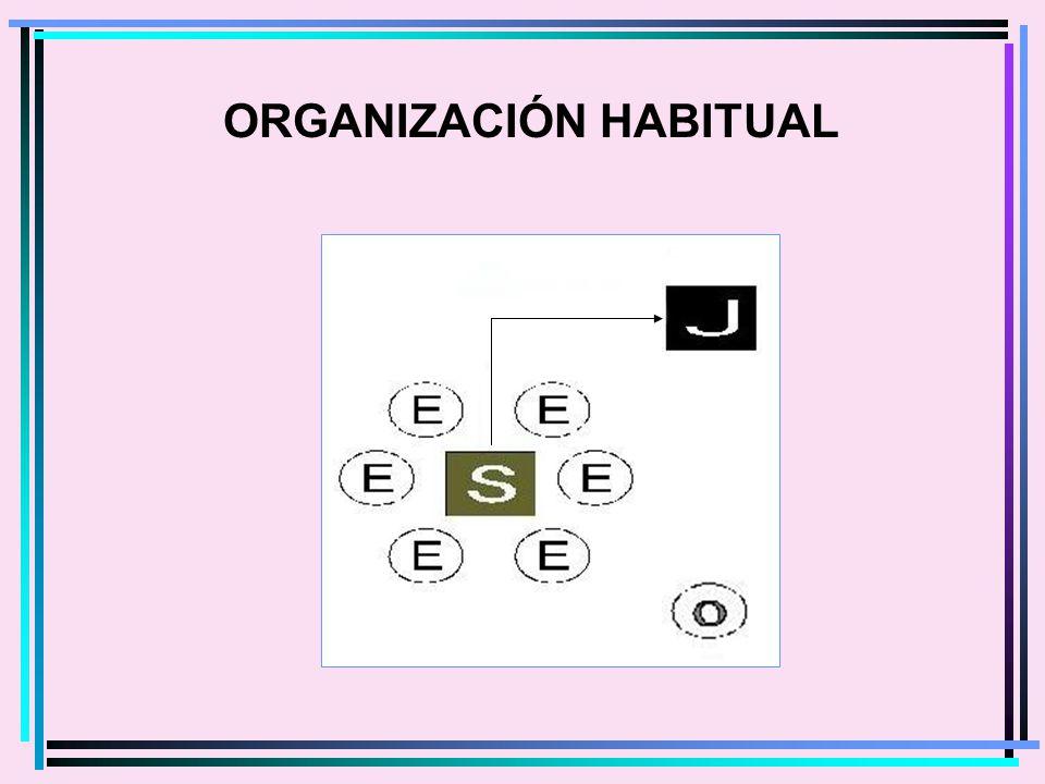 ORGANIZACIÓN HABITUAL