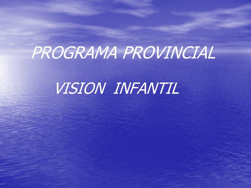 PROGRAMA PROVINCIAL VISION INFANTIL