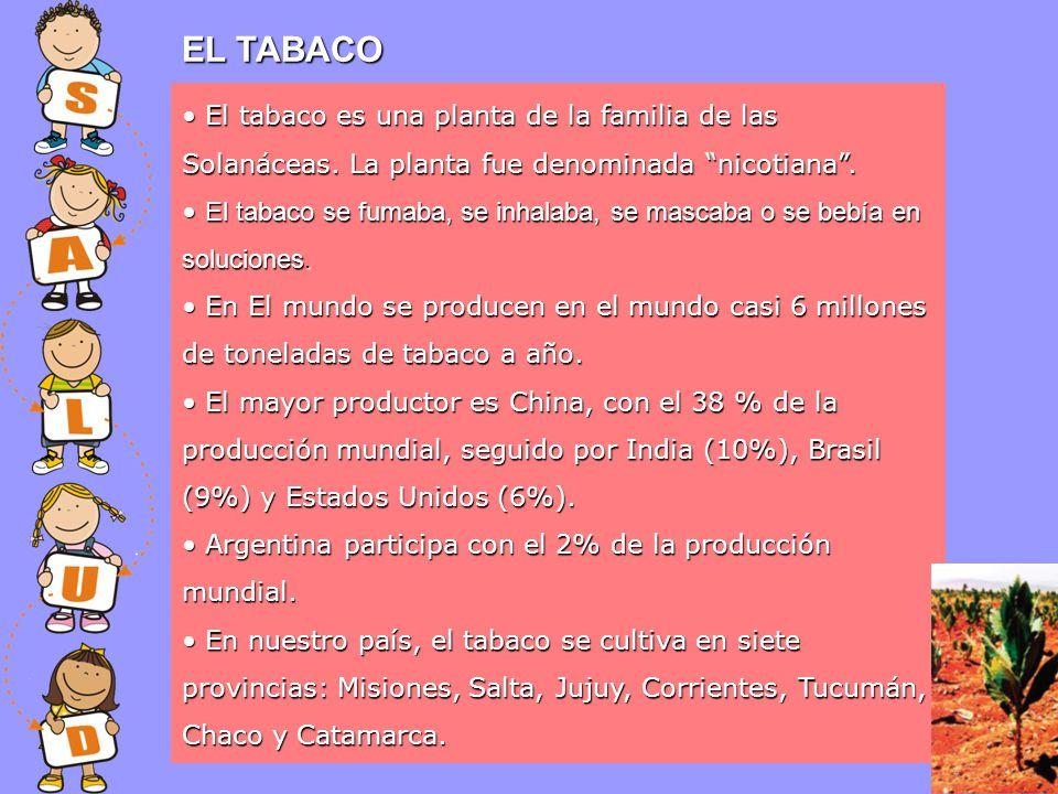 EL TABACO El tabaco es una planta de la familia de las Solanáceas. La planta fue denominada nicotiana .