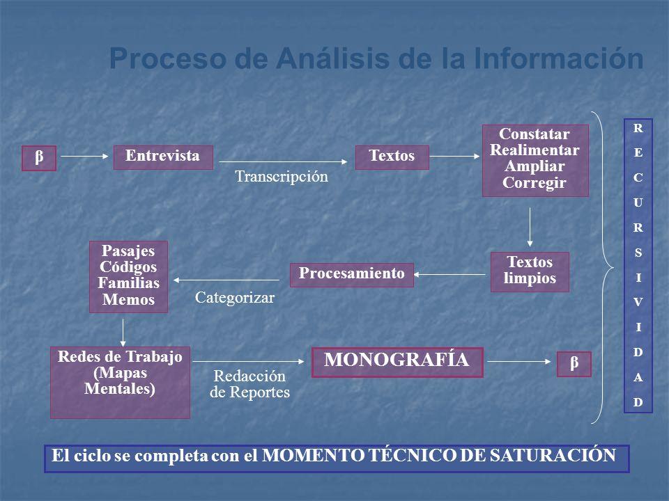 Proceso de Análisis de la Información