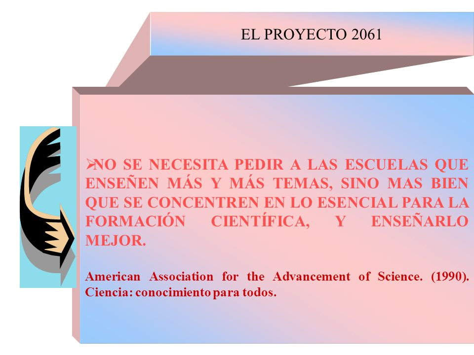 EL PROYECTO 2061