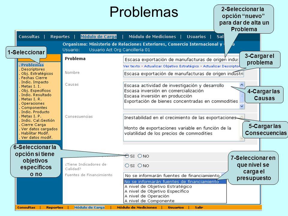 Problemas 2-Seleccionar la opción nuevo para dar de alta un Problema