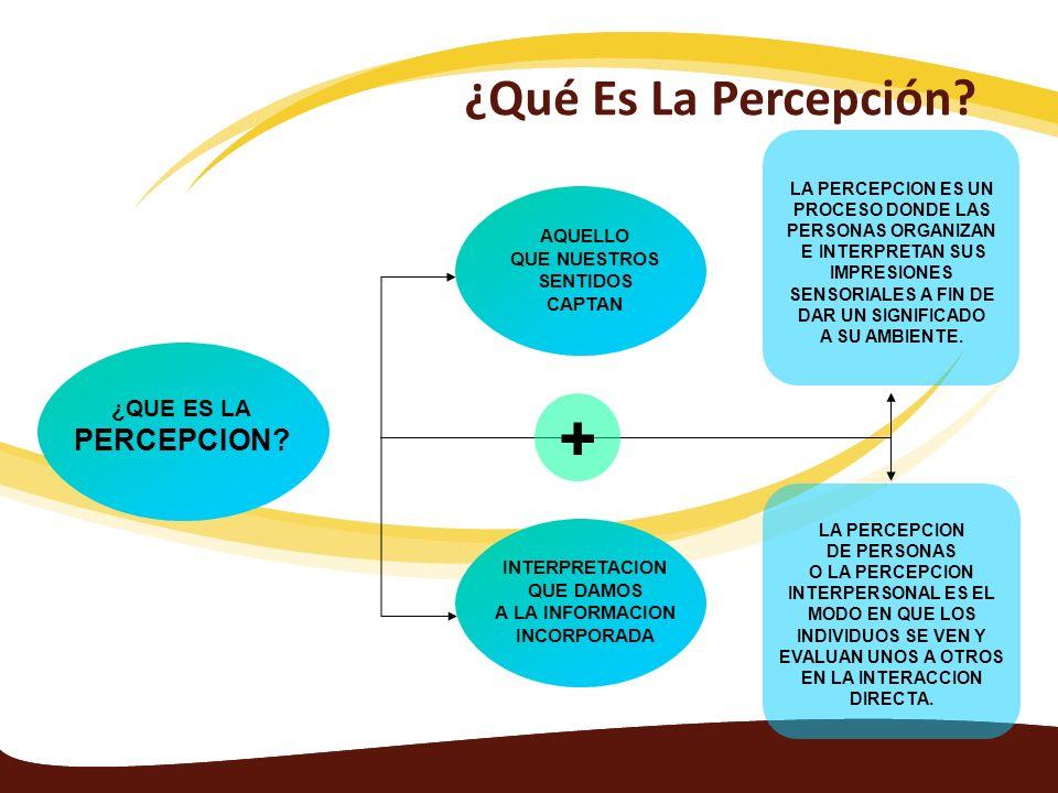 + ¿Qué Es La Percepción PERCEPCION ¿QUE ES LA AQUELLO QUE NUESTROS