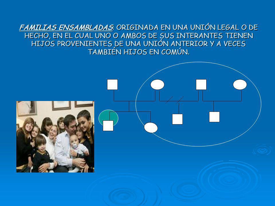 Familia monoparental FAMILIAS ENSAMBLADAS: ORIGINADA EN UNA UNIÓN LEGAL O DE HECHO, EN EL CUAL UNO O AMBOS DE SUS INTERANTES TIENEN HIJOS PROVENIENTES DE UNA UNIÓN ANTERIOR Y A VECES TAMBIÉN HIJOS EN COMÚN.