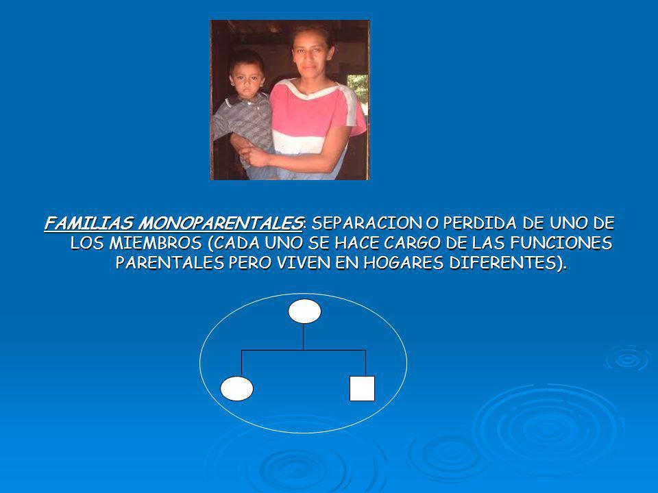FAMILIAS MONOPARENTALES: SEPARACION O PERDIDA DE UNO DE LOS MIEMBROS (CADA UNO SE HACE CARGO DE LAS FUNCIONES PARENTALES PERO VIVEN EN HOGARES DIFERENTES).