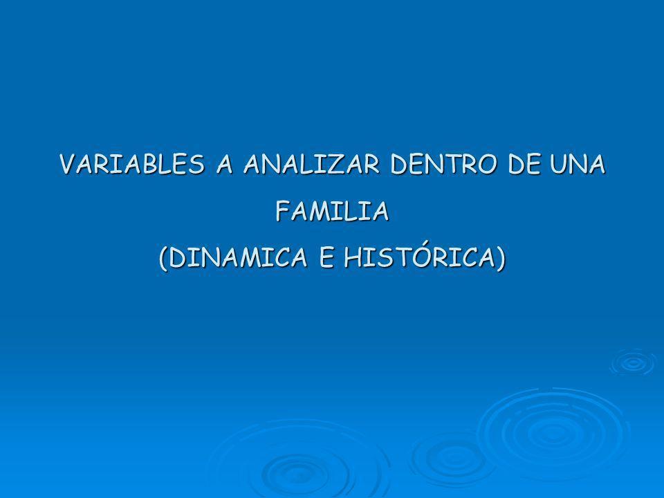 VARIABLES A ANALIZAR DENTRO DE UNA FAMILIA (DINAMICA E HISTÓRICA)