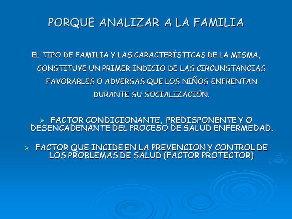PORQUE ANALIZAR A LA FAMILIA