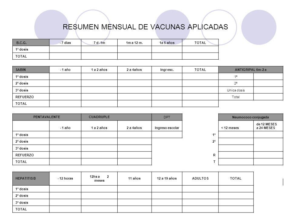 RESUMEN MENSUAL DE VACUNAS APLICADAS