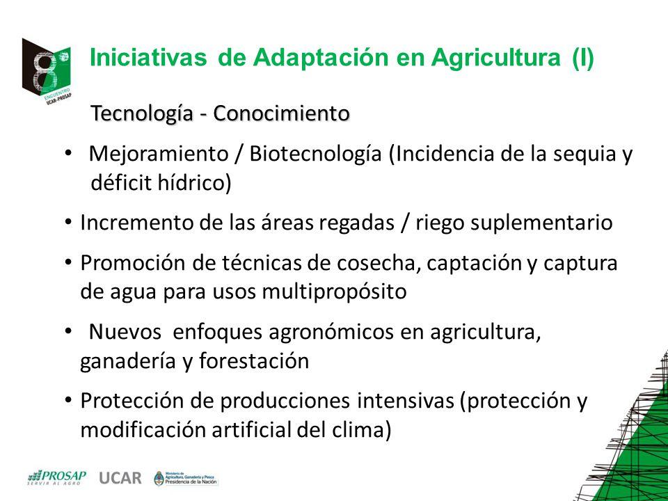 Iniciativas de Adaptación en Agricultura (I)