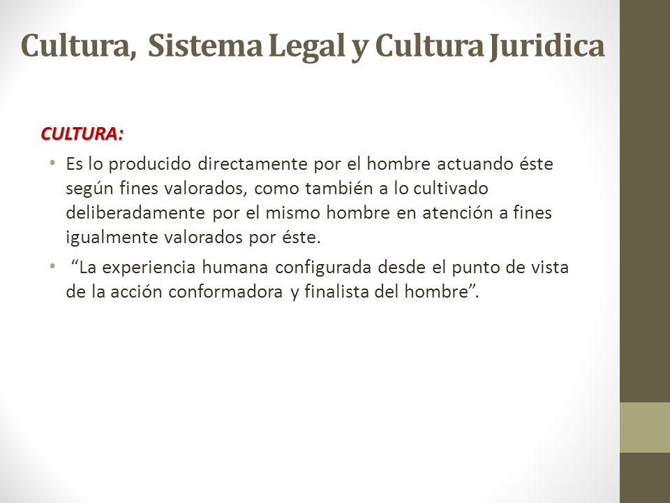 Cultura, Sistema Legal y Cultura Juridica