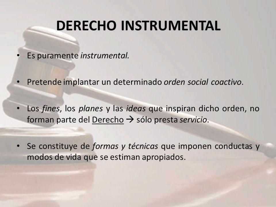 DERECHO INSTRUMENTAL Es puramente instrumental.