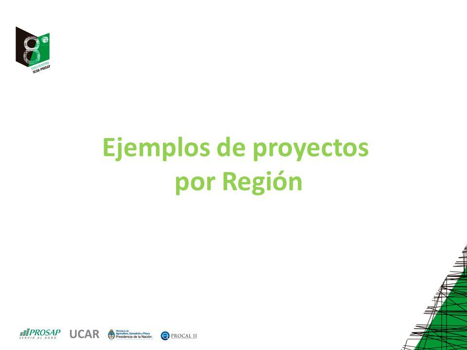Ejemplos de proyectos por Región