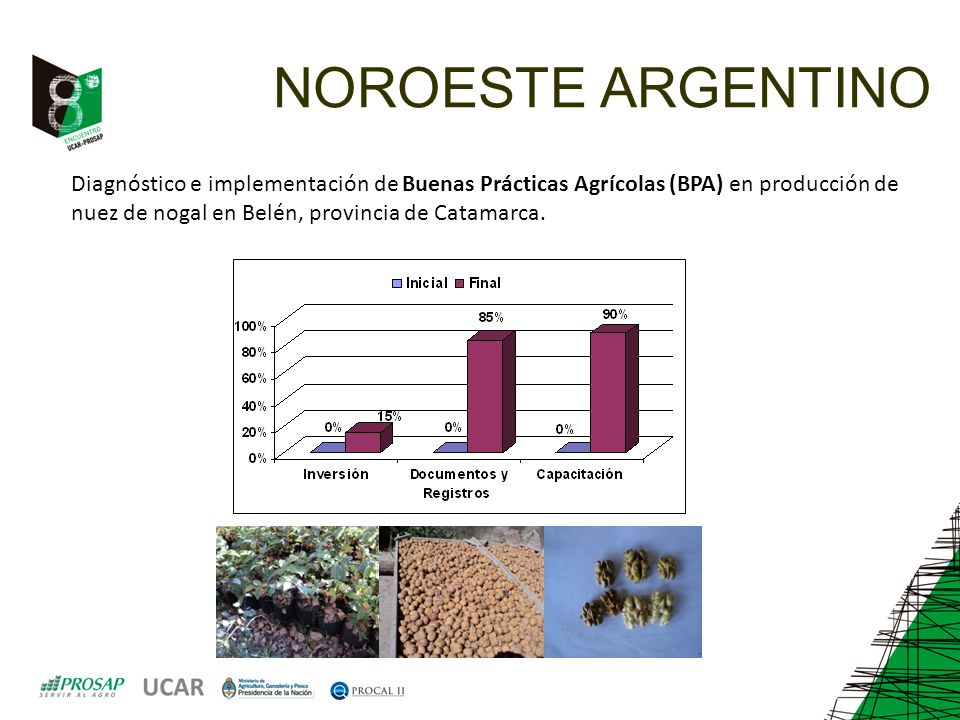 NOROESTE ARGENTINO Diagnóstico e implementación de Buenas Prácticas Agrícolas (BPA) en producción de nuez de nogal en Belén, provincia de Catamarca.