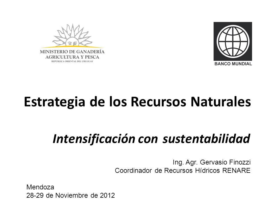 Estrategia de los Recursos Naturales. Intensificación con