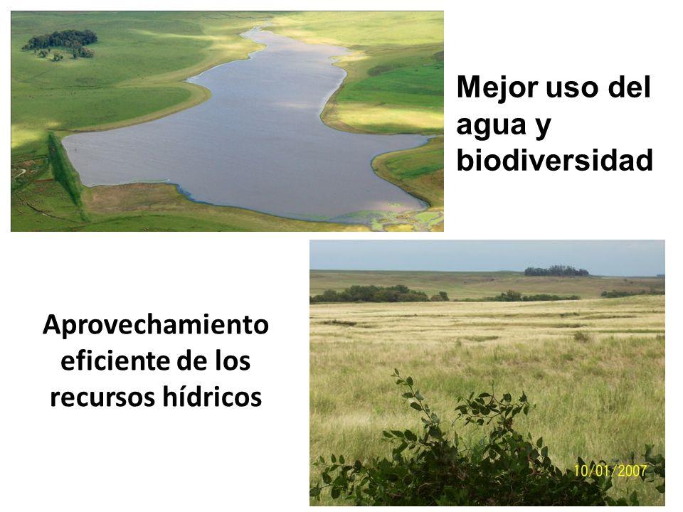Aprovechamiento eficiente de los recursos hídricos