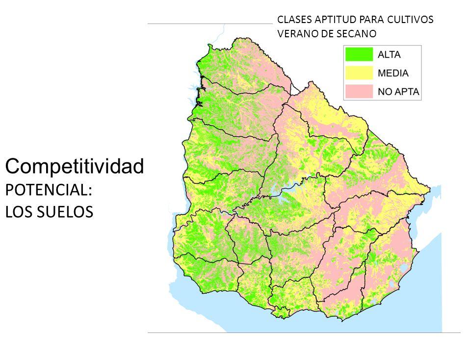 Competitividad POTENCIAL: LOS SUELOS