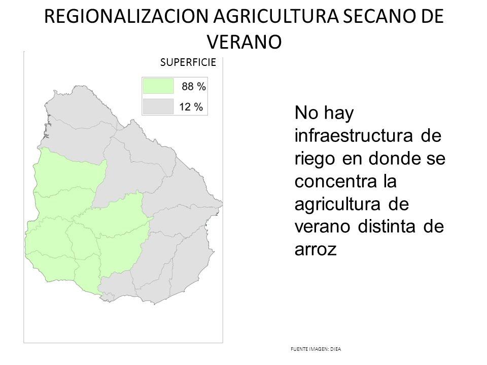 REGIONALIZACION AGRICULTURA SECANO DE VERANO