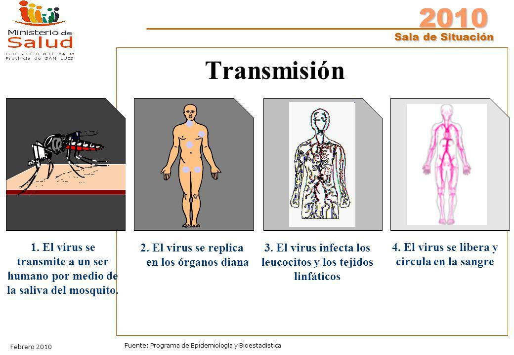 Transmisión 1. El virus se transmite a un ser humano por medio de la saliva del mosquito. 2. El virus se replica.