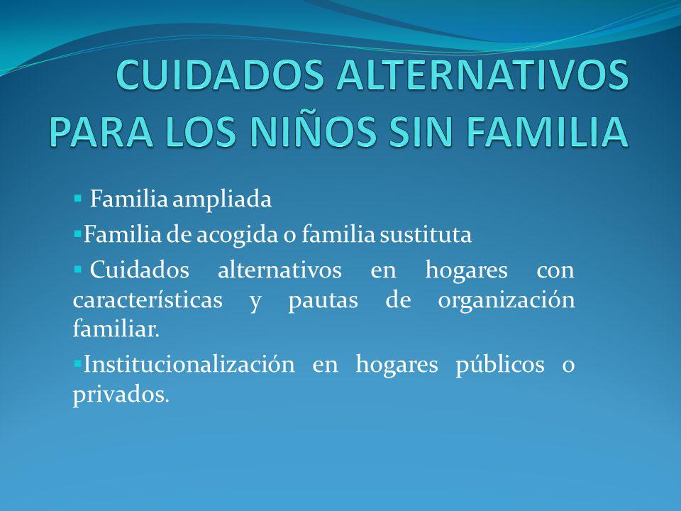 CUIDADOS ALTERNATIVOS PARA LOS NIÑOS SIN FAMILIA