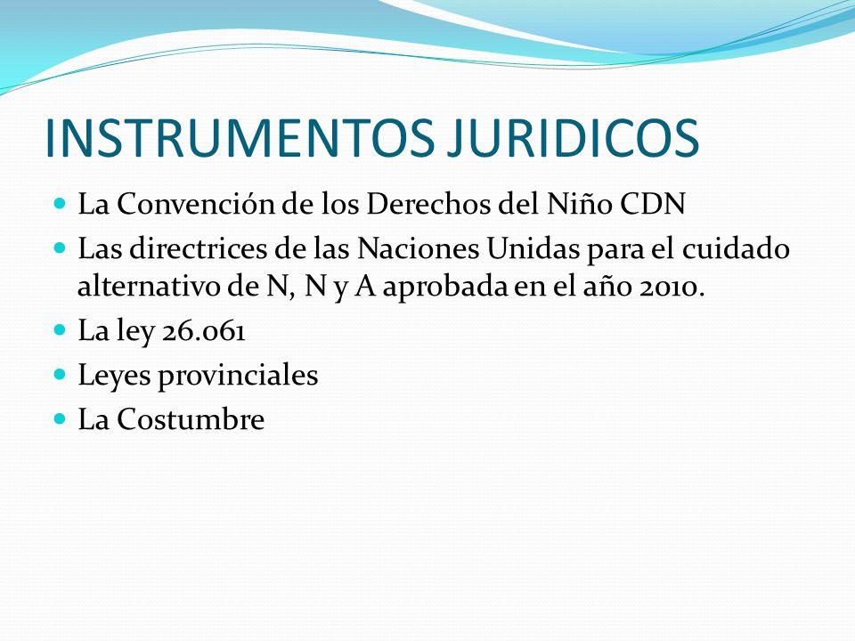 INSTRUMENTOS JURIDICOS