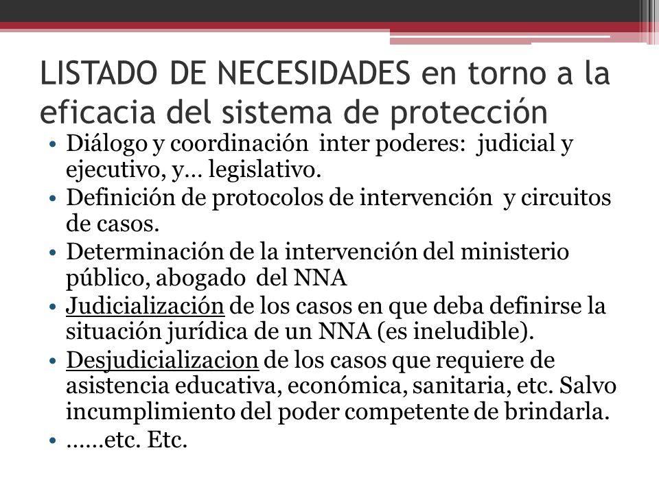 LISTADO DE NECESIDADES en torno a la eficacia del sistema de protección