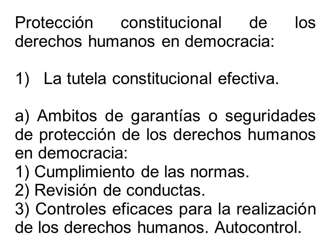 Protección constitucional de los derechos humanos en democracia: