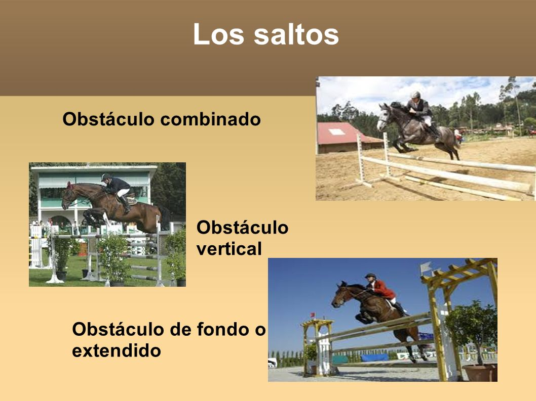 Los saltos Obstáculo combinado Obstáculo vertical