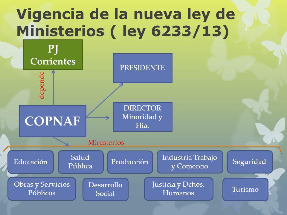 Vigencia de la nueva ley de Ministerios ( ley 6233/13)