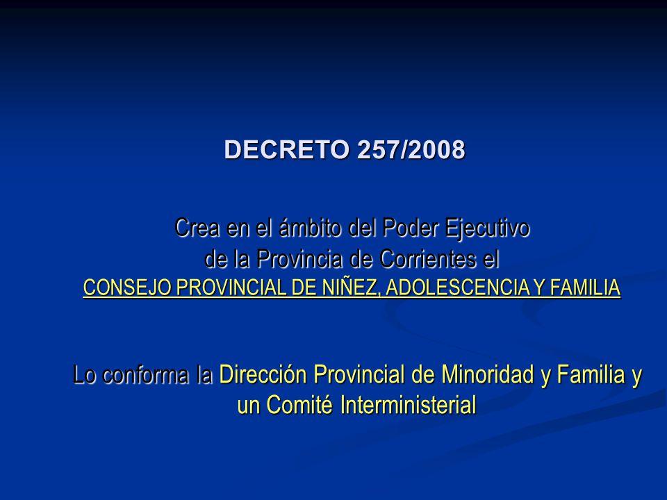 Crea en el ámbito del Poder Ejecutivo de la Provincia de Corrientes el