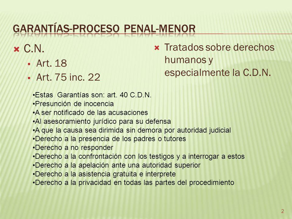 GARANTÍAS-PROCESO PENAL-MENOR