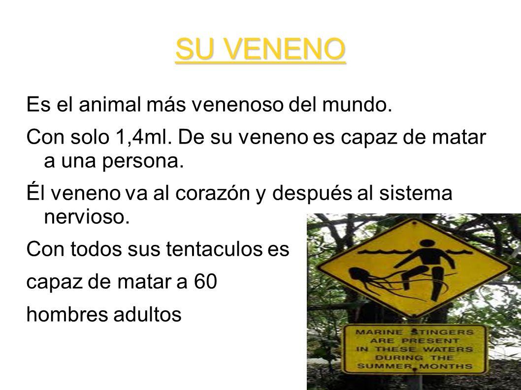 SU VENENO Es el animal más venenoso del mundo.