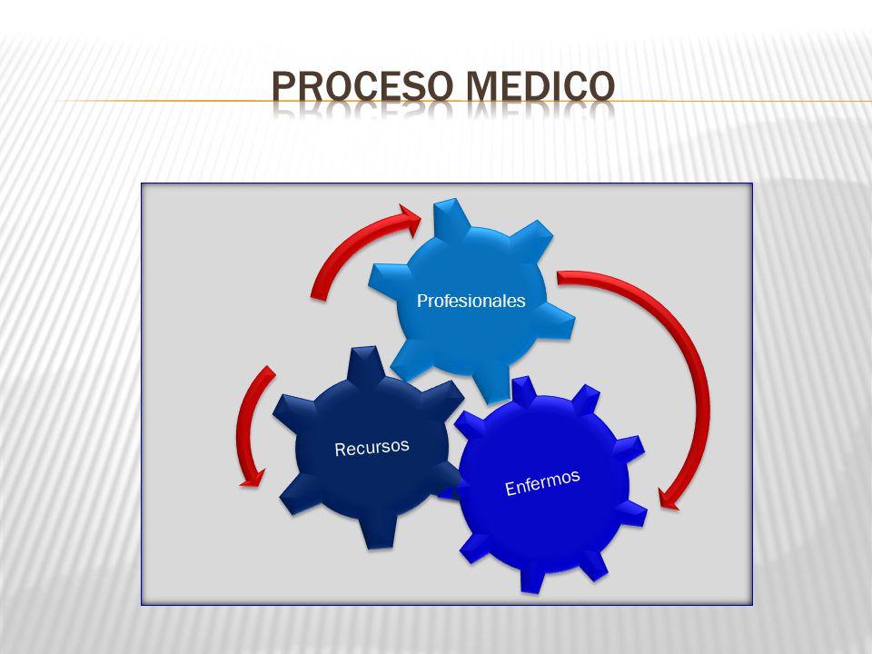 Proceso medico Enfermos Recursos Profesionales