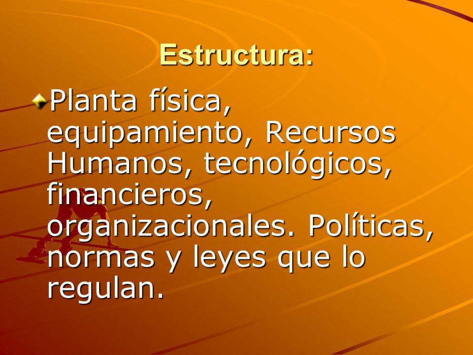 Estructura: Planta física, equipamiento, Recursos Humanos, tecnológicos, financieros, organizacionales.