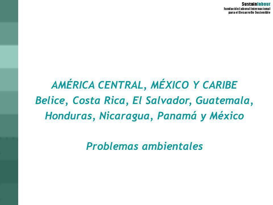 AMÉRICA CENTRAL, MÉXICO Y CARIBE Problemas ambientales