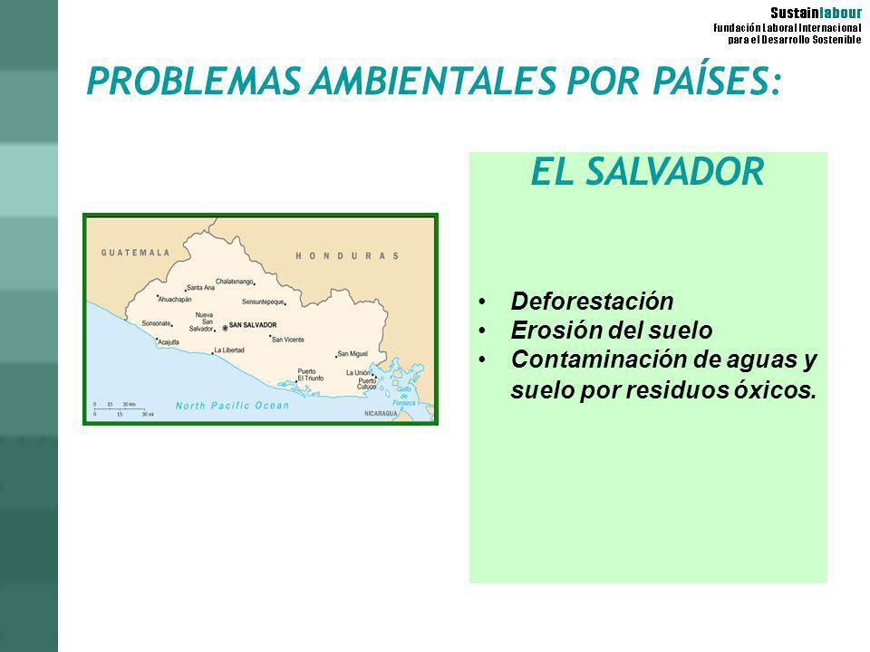 PROBLEMAS AMBIENTALES POR PAÍSES: