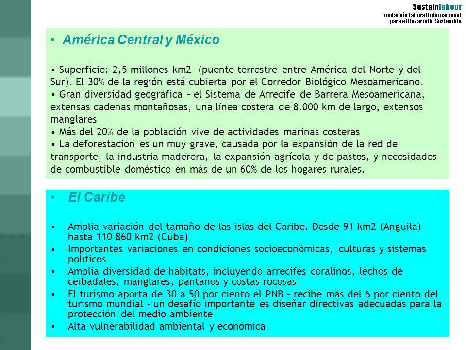 América Central y México • Superficie: 2,5 millones km2 (puente terrestre entre América del Norte y del Sur). El 30% de la región está cubierta por el Corredor Biológico Mesoamericano. • Gran diversidad geográfica – el Sistema de Arrecife de Barrera Mesoamericana, extensas cadenas montañosas, una línea costera de 8.000 km de largo, extensos manglares • Más del 20% de la población vive de actividades marinas costeras • La deforestación es un muy grave, causada por la expansión de la red de transporte, la industria maderera, la expansión agrícola y de pastos, y necesidades de combustible doméstico en más de un 60% de los hogares rurales.