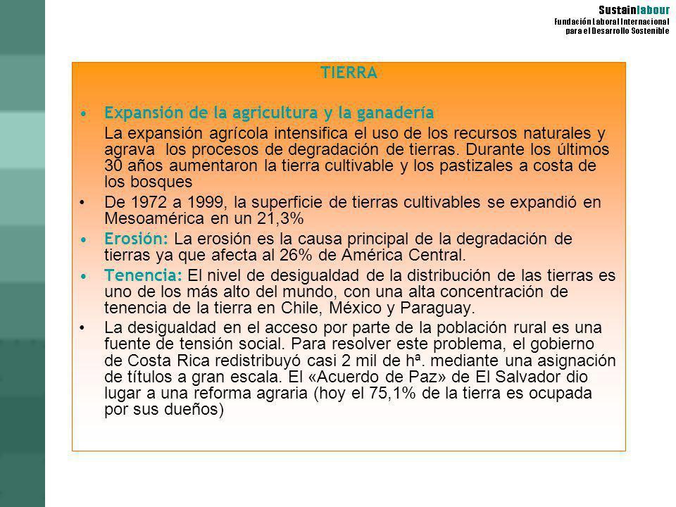 TIERRA Expansión de la agricultura y la ganadería.